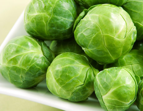 Brussel Sprout Photo