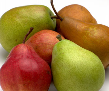 pear variety