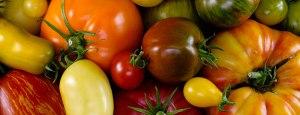 tomatoe varieties