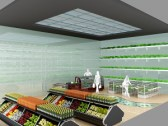 concept of a Hydroponic grocery store.
