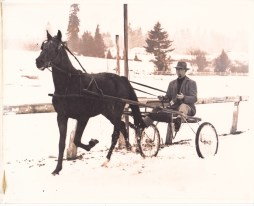 Paul Easton with trotter horse Miss Dean at the Portland Hunt Club