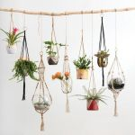 30 Adorable Indoor Hanging Plants to Decorate Your Home (9)