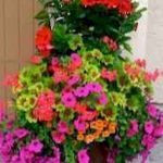 40 Beautiful Container Flower Garden Ideas (20)