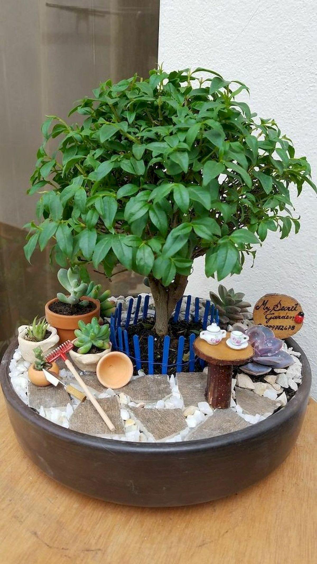 40 Beautiful Indoor Fairy Garden Ideas (19)