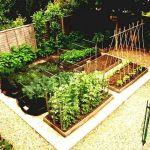 45 Interesting Vegetables Garden Ideas (22)