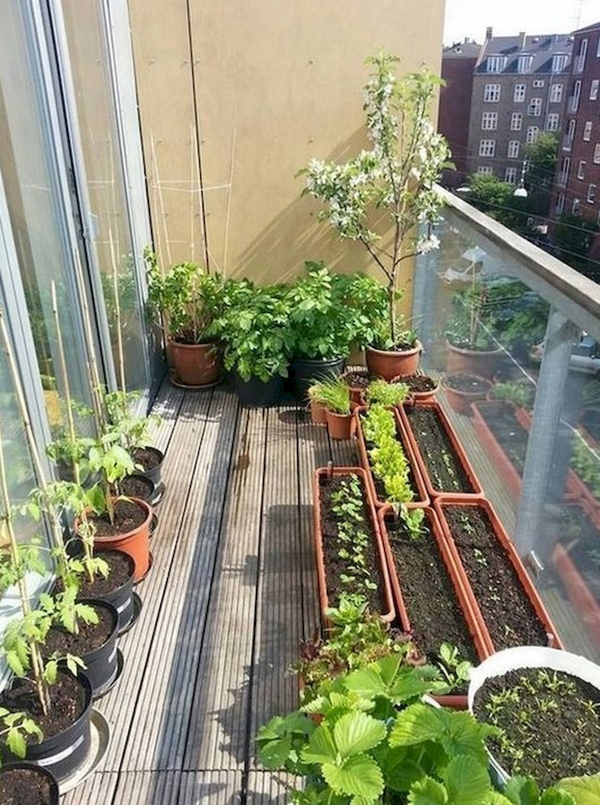 50 Inspiring Small Vegetable Garden Ideas (19)