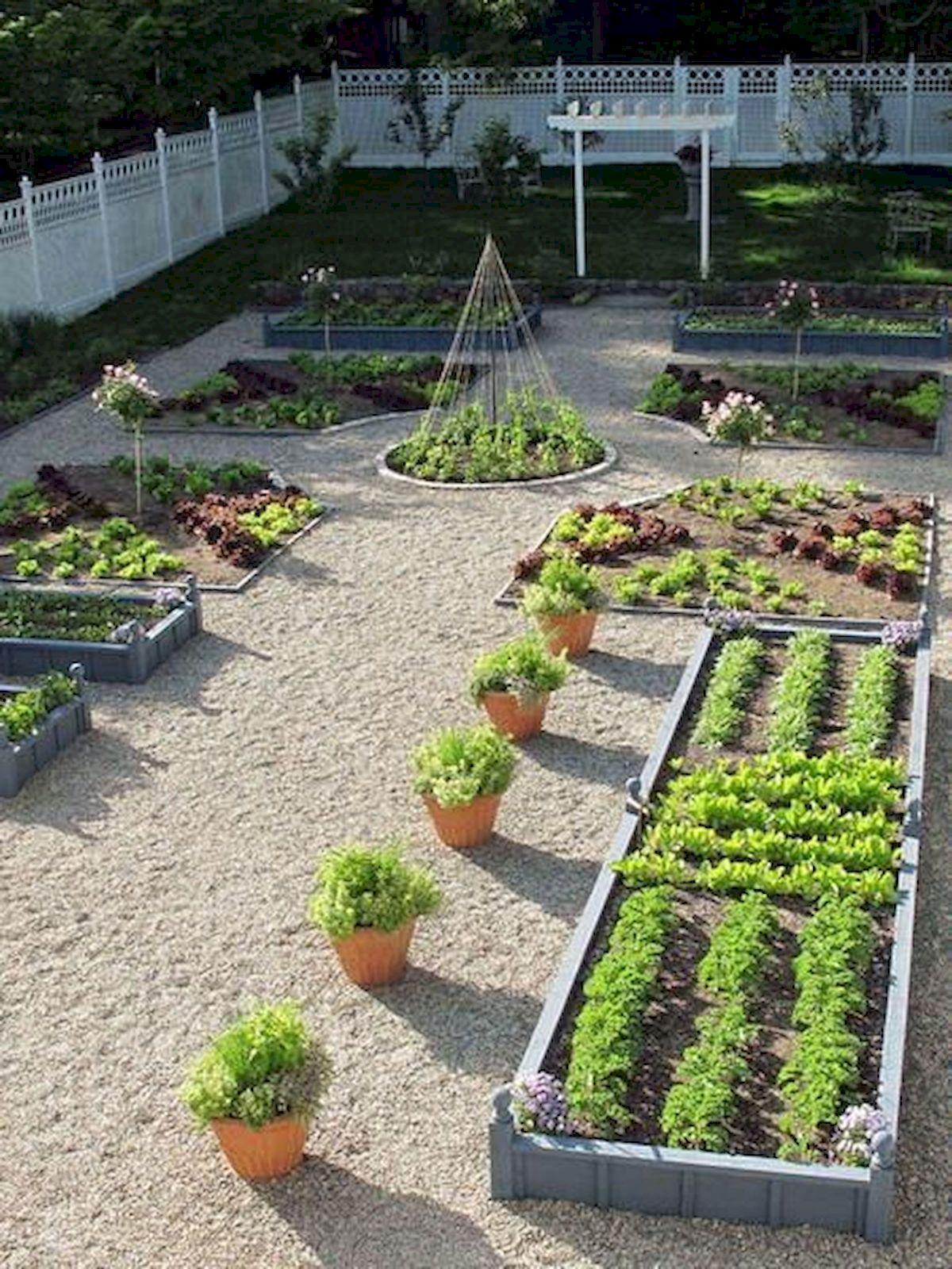 50 Inspiring Small Vegetable Garden Ideas (47)