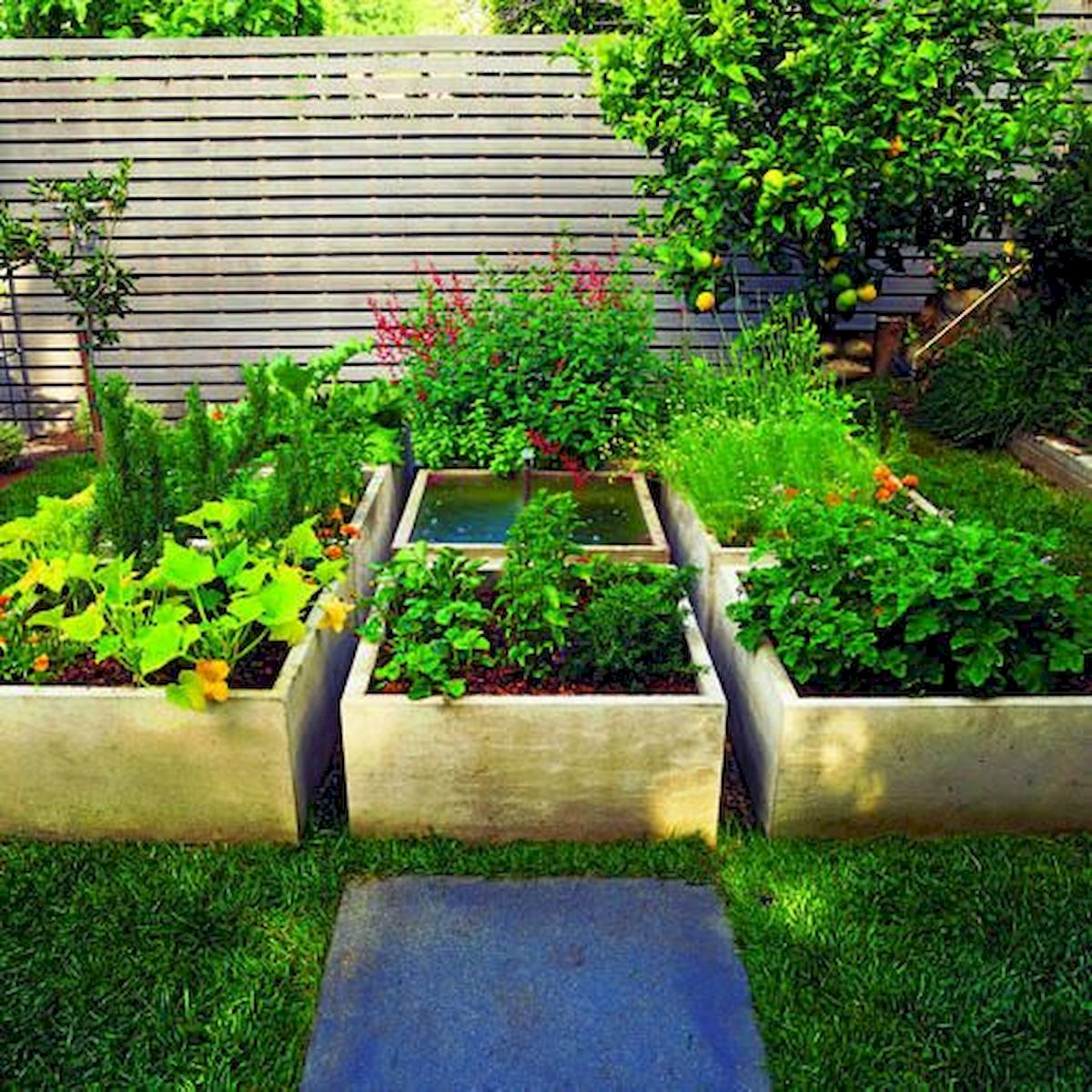 50 Inspiring Small Vegetable Garden Ideas (48)