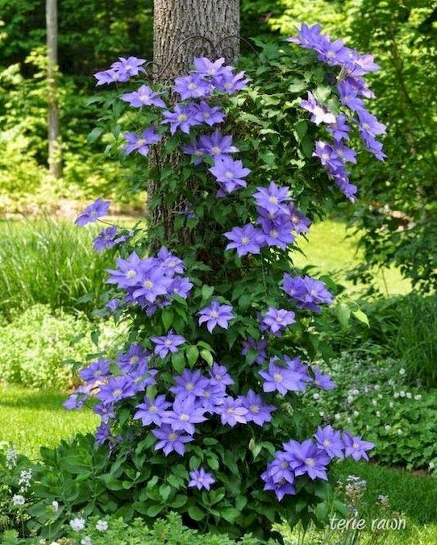 55 Beautiful Flower Garden Design Ideas (29)