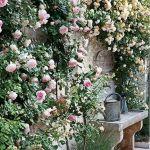 55 Beautiful Flower Garden Design Ideas (52)