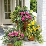 80 Best Patio Container Garden Design Ideas (49)