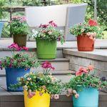 80 Best Patio Container Garden Design Ideas (5)