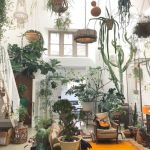40 Awesome Indoor Garden Design Ideas That Look Beautiful (29)