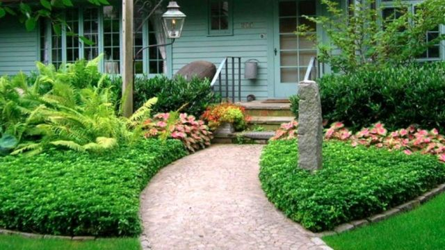 Adorable landscaping front yard