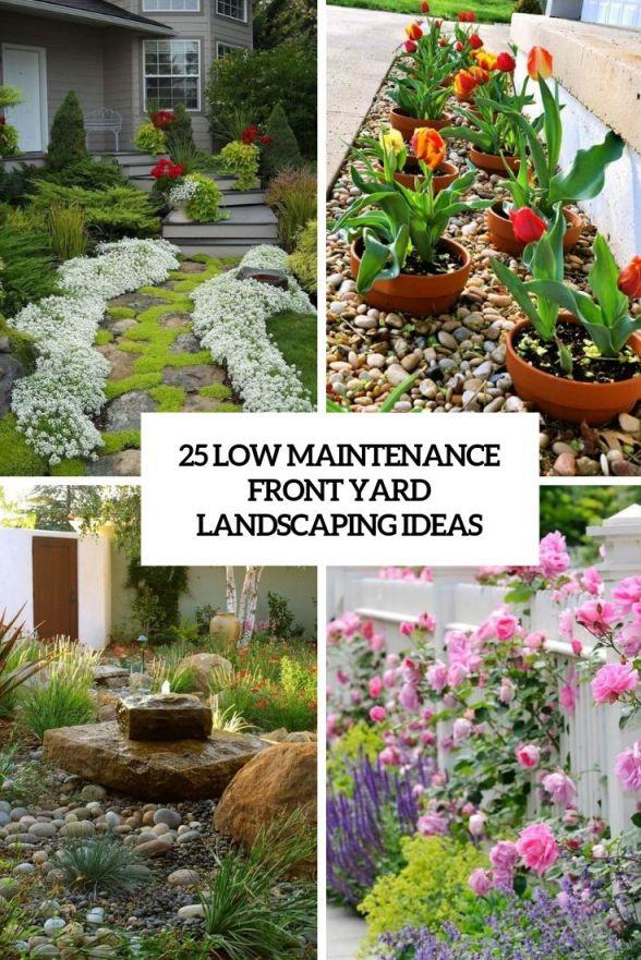 Fantastic  low maintenance landscaping