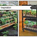 Top Winter Garden Ideas