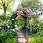 Adorable Backyard Flower Bed Ideas
