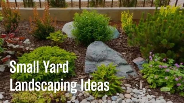 Gorgeous backyard garden ideas for small yards