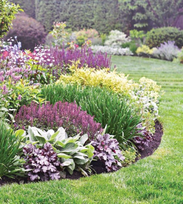 Top garden border planting ideas