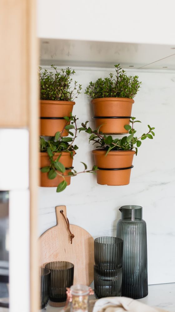 Top indoor herb garden ideas