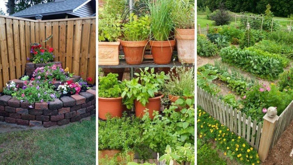 Awesome Backyard Garden Layouts