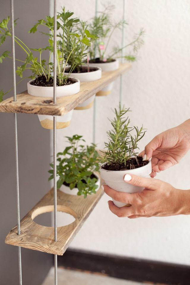 Amazing indoor herb garden ideas