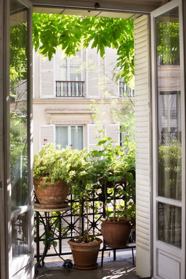 Wonderful balcony plant ideas