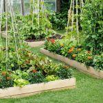 Best Corner Garden Bed Ideas