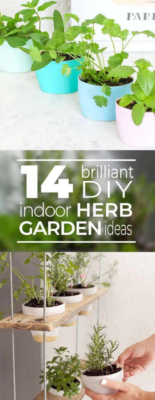Best Indoor Herb Garden Ideas