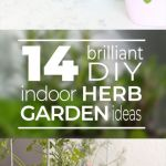Best Indoor Herb Garden Ideas