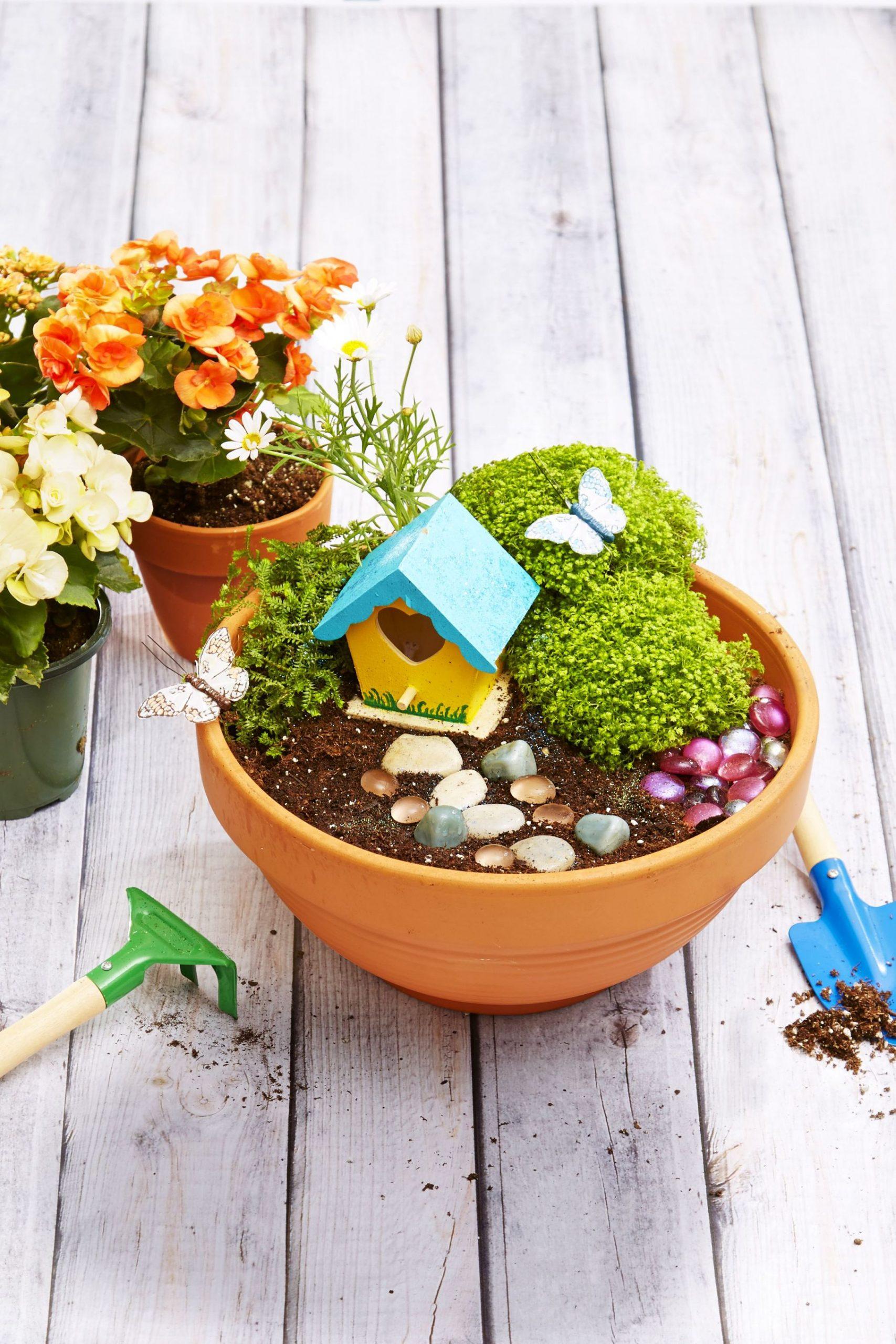 Nice Outdoor Plants In Pots Ideas