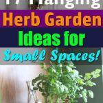 Wonderful Hanging Herb Garden Ideas