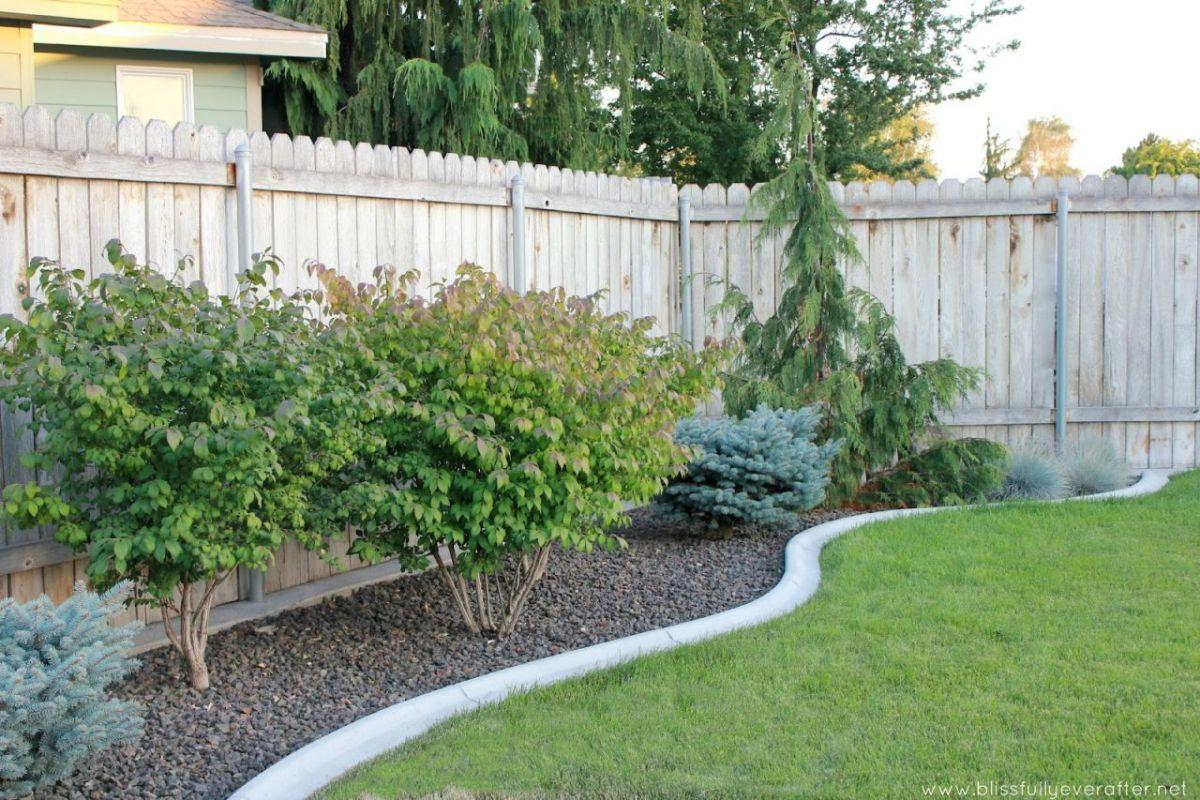 Beautiful  cheap backyard landscaping ideas