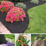 Cool Front Garden Border Ideas