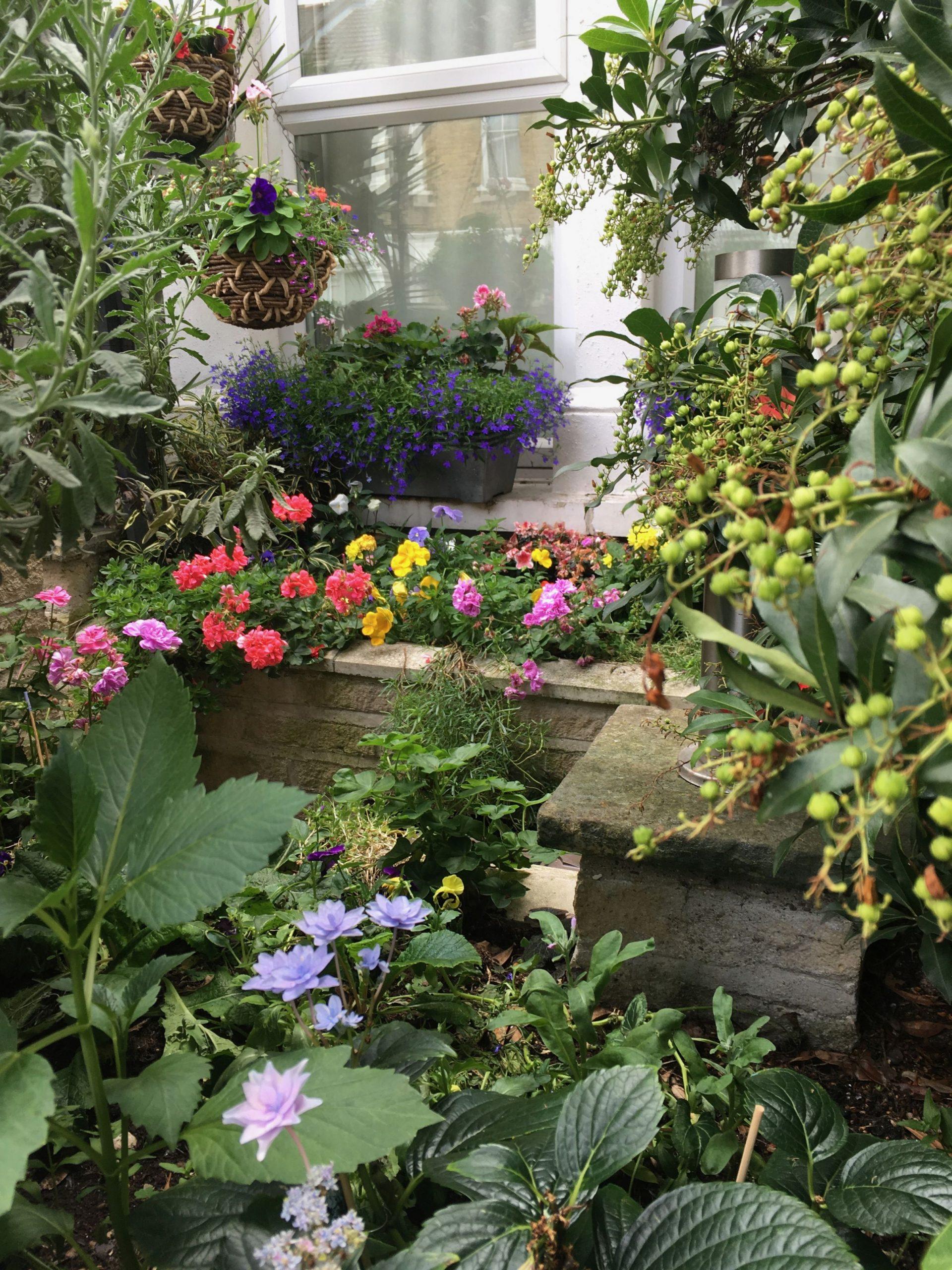 Amazing Terraced House Front Garden Ideas