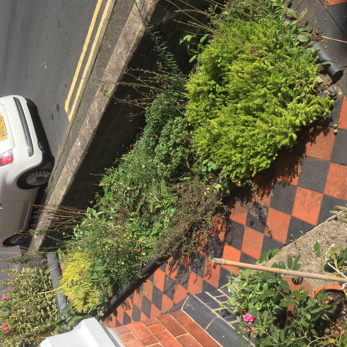 Best  terraced house front garden ideas