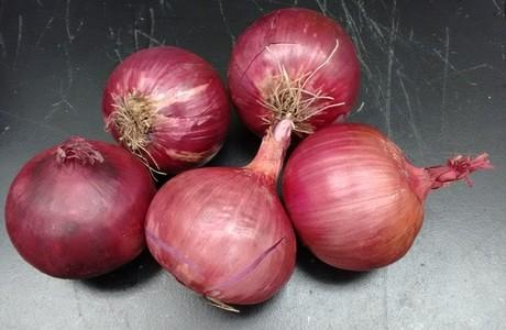 onionscancer