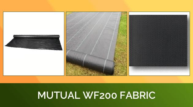 Mutual WF200