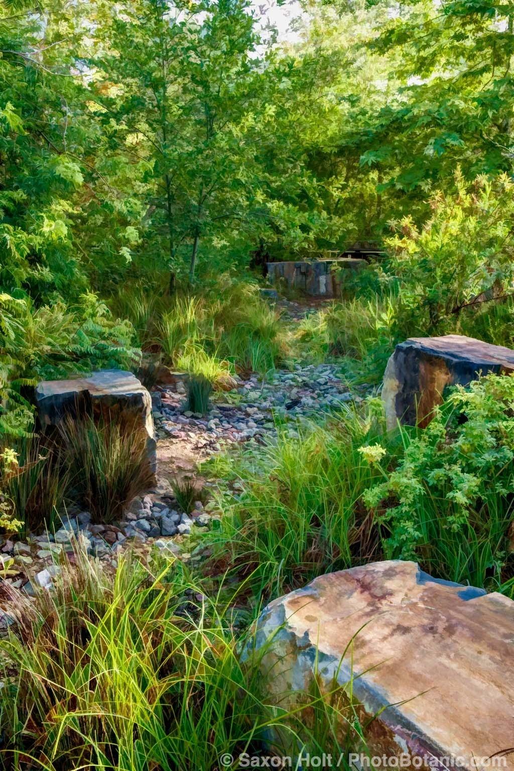 Hidden Gem - at Los Angeles Habitat Garden