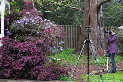 Doreen Wynja - student at Marin Art & Garden Center photo workshop