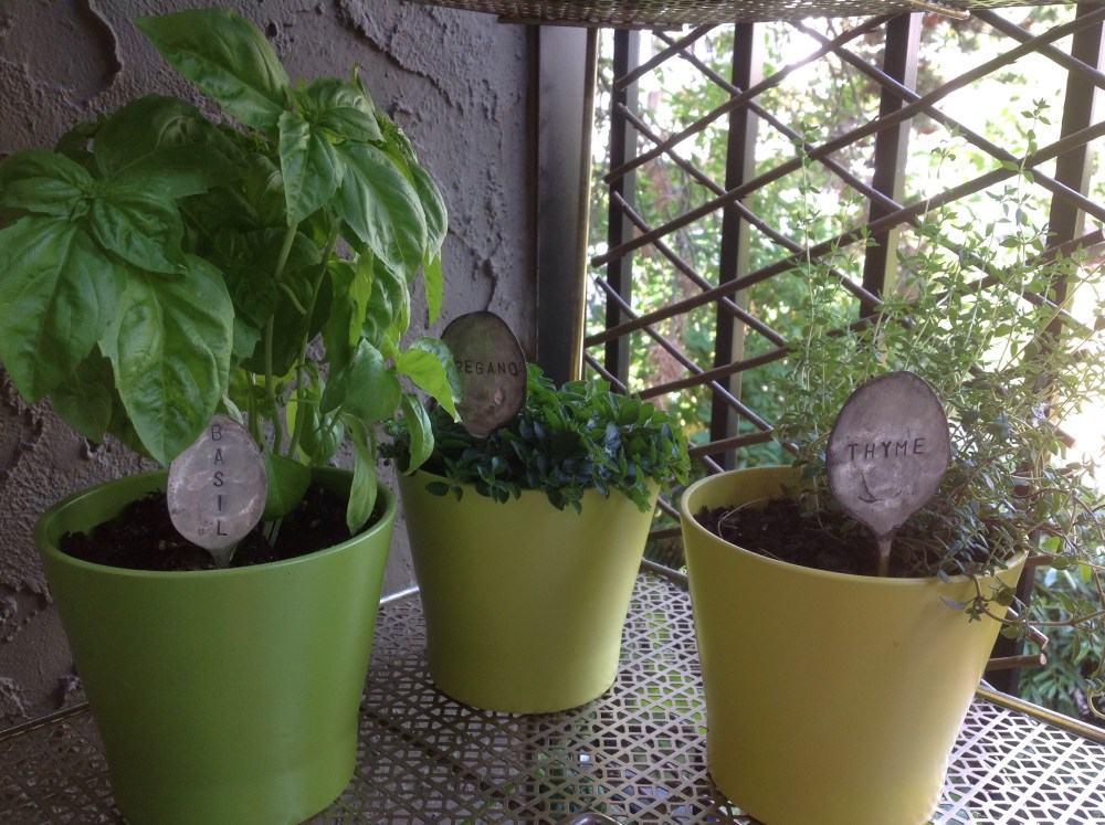 Time, Thyme and more Time (2/2)