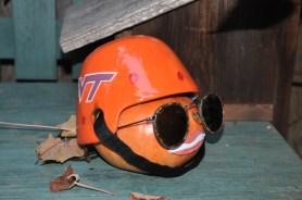 Virginia Tech Pumpkin