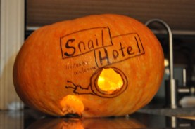 An enterprising snail created a private entrance