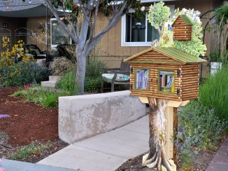 Little Free Library | Donna Pierre Design
