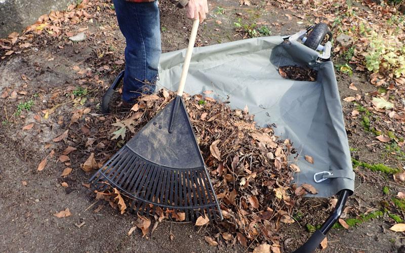 Allsop WheelEasy raking leaves into cart