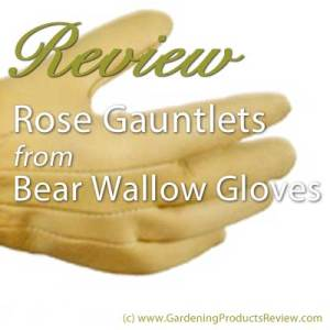 Bear Wallow Rose Gauntlets