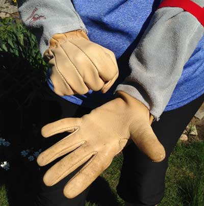 comfortable Bear Wallow rose gauntlet gloves
