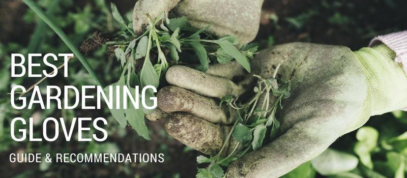 Best Gardening Gloves Image