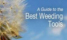 Best Weeding Tools: Guide & Recommendations 2017