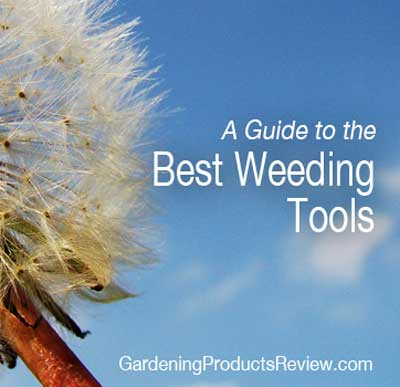 Best Weeding Tools